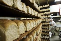 Det daglege brød 8