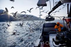 Fiskfråfjorden 3