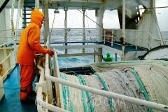 Kolmulefiske i Atlanterhavet 4