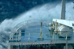 Kolmulefiske i Atlanterhavet 12